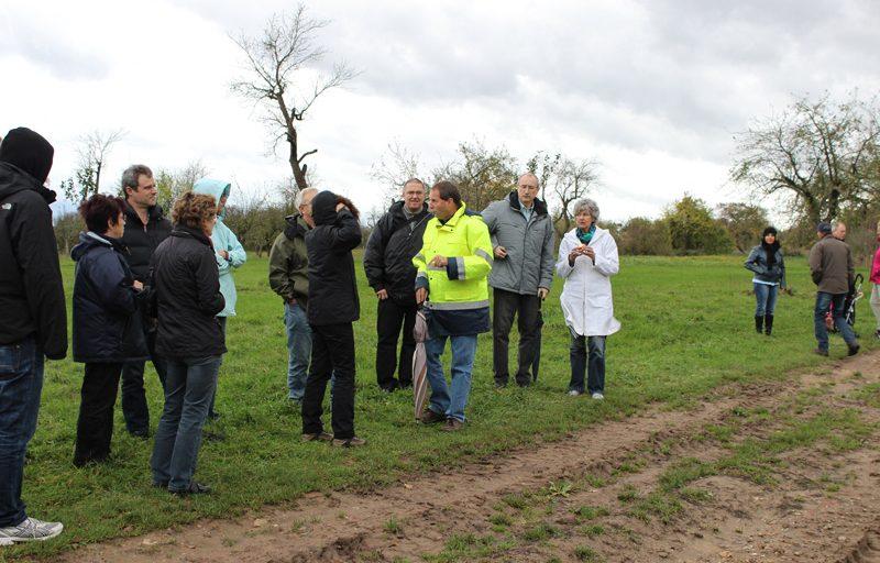Die FDP Maintal erkundet die Streuobstwiesen mit Dr. Dieter Fritz (in der gelben Regenjacke) als fachkundigen Führer.